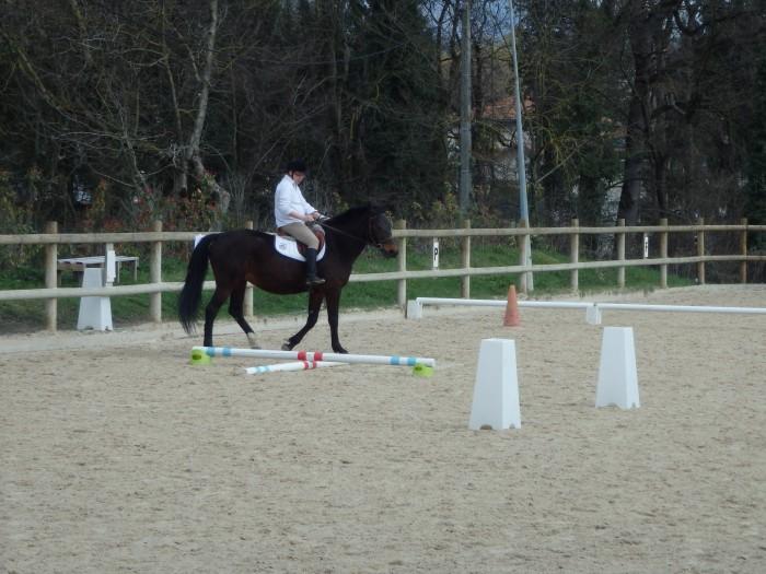 Equitation_CDSA 38